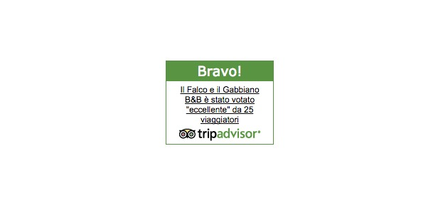 tripadvisor_bravo_ilfalcoeilgabbiano
